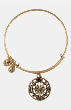 Adding this gold Alex and Ani compass bangle to the collection.