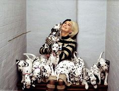 Follow the Piper: DALMATIANS