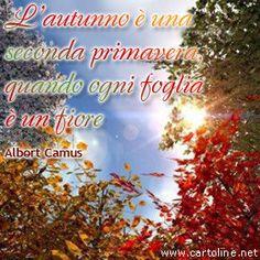Frase autunnale di Albert Camus