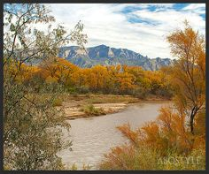 The Rio Grande with the Sandia Mountains in the background by ABQ & Rio Rancho,NM