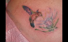 Colorful Bird Tattoos Tattoos of humming bird