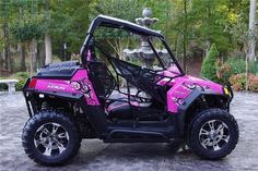 forget the bad boy buggie, unless we can get it customized in pink, this is our next new toy.
