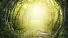 http://bilder.t-online.de/b/71/34/25/28/id_71342528/610/tid_da/viele-menschen-die-klinisch-tot-waren-berichten-von-hellem-licht-.jpg