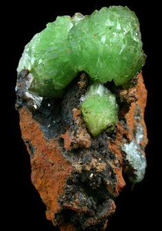 Lustrous green rosettes of green Cuproadamite crystals on Limonite gossan matrix. Mina Ojuela, Mapimi, Durango, Mexico-