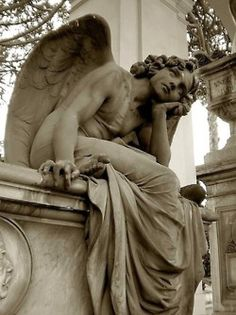 watching angels