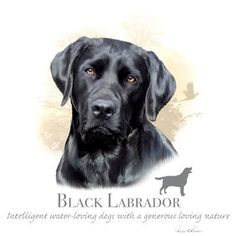 BLACK LABRADOR RETRIEVER Hund Stoff mit Phrase  von TheLonesomePet