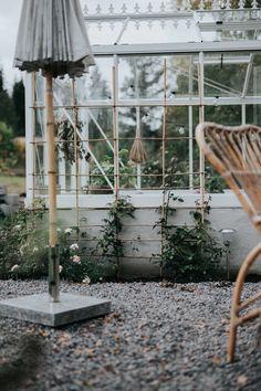 Dream Garden, Home And Garden, Outdoor Spaces, Outdoor Living, Build A Greenhouse, Balcony Plants, Go Outside, Garden Planning, Garden Inspiration
