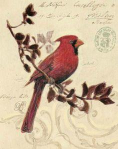 Cardinal  Cross stitch pattern pdf format by diana70 on Etsy, $6.50