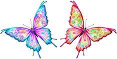 papillon vole papillon - Page 11