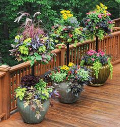 Two tiered planters - great for patio or deck areas