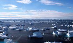 Norska politiker lobbar i EU mot förbud att borra i Arktis | Natursidan