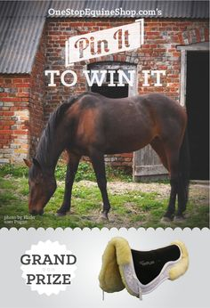 PIN TO WIN an Ultra Thinline Trifecta Cotton with Sheepskin Half Pad-product #6674 from onestopequineshop.com