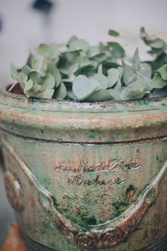 pottery + eucalyptus // photo by Thomas Steibl