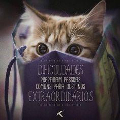 Dificuldades preparam pessoas comuns para destinos extraordinários...