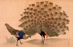 Peacock and Peahen, by Maruyama Okyo - MIHO MUSEUM