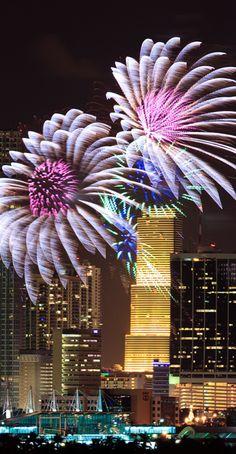 Fireworks over Miami | cynthia reccord