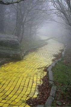 Eerie yelliw brick road at an abandoned amusement oark in n carolina. Open once a year only. Called land of oz