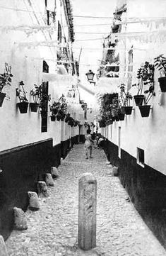 MALAGA EN FOTOS Andalusia Spain, Malaga Spain, Easy Halloween Decorations, Trinidad, Scary, Granada, Places, The Neighbourhood, Street