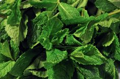 There is nothing better than #fresh #mint! Try our #tropical mint #juice: the Stomach Soother!