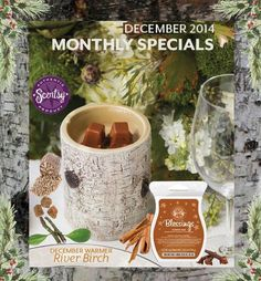RIVER BIRCH ~ Scentsy Warmer of the Month for December 2014 ~ 10% off ( A one piece Element Warmer ) GREAT GIFT for guys and for that country home or cabin. ORDER ONLINE~SHIPS DIRECT  https://annarumsey.scentsy.us