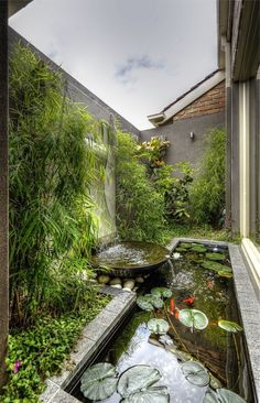 If you have a backyard, you could easily turn it into a gorgeous garden with fountains, pools, and flowers. A water garden can turn your backyard into a relaxing haven that everyone can enjoy. The water from the fountain or… Continue Reading → Ponds Backyard, Backyard Landscaping, Landscaping Ideas, Backyard Ideas, Modern Backyard, Tropical Landscaping, Modern Pond, Backyard Designs, Tropical Garden