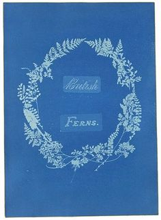Cyanotype by Anna At