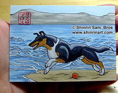 Unique Japanese brush and comic style pet art - Custom Pet Art: portraits of your dogs, cats and horses! Smooth Collie, Pet Art, Comic Styles, Presents, Snoopy, Horses, Japanese, Comics, Pets