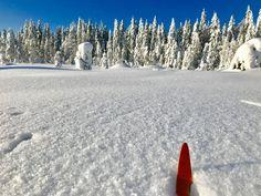 SNØEN SOM FALT I FJOR: Det er lov å håpe at vi får et mykt, hvitt dekke igjen. Norway, Snow, Dress, Outdoor, Outdoors, Dresses, Vestidos, Outdoor Games, The Great Outdoors