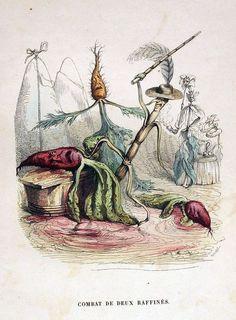 J. J. Grandville: Combat de deux Raffines  [carrot, Daucus carota, Apiaceae], [beet, Beta vulgaris, Amaranthaceae] [corn?, Zea mays, Poaceae]
