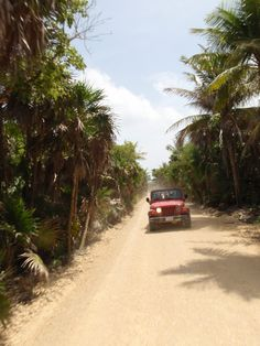 Punta Allen, Mayan Riviera, Mexico (Jeep excursion)