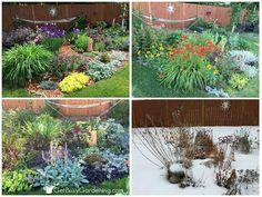 4 season center perennial garden