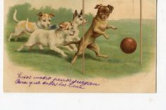 Dogs playing  soccer vintage postcard by sharonfostervintage