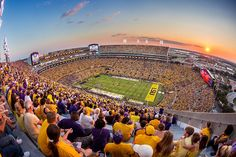 Lessons from a Texas transplant living in Louisiana, from daiquiris in geaux cups to mudbug boils. Lsu Tiger Stadium, Lsu Tigers Football, Sec Football, Football Stadiums, College Football, Louisiana Homes, Louisiana State University, Death Valley Lsu, College Life