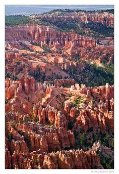 Bryce Canyon, UT.  Came here in 1995.  I preferred it to the Grand Canyon because it had more color.