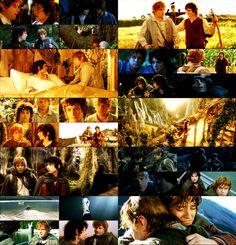 """Don't you lose him, Samwise Gamgee. I don't mean to. I don't mean to."""