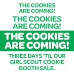 Well -reall 14 days till we can take orders -------- Girl Scout Vest, Girl Scout Swap, Girl Scout Leader, Girl Scout Troop, Boy Scouts, Girl Scout Cookie Sales, Girl Scout Cookies, Gs Cookies, Girl Scout Camping