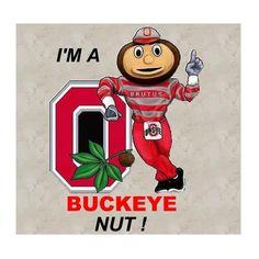 Oregon Ducks Football, Ohio State Football, Ohio State University, Ohio State Buckeyes, American Football, Buckeyes Football, Football Art, Ohio State Tattoos, Ohio State Rooms