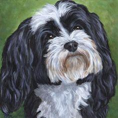 Custom Portrait, Black and White Havanese, Dog Painting, original 8x8 custom pet portrait by Hope Lane