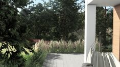 #gardenproject #conception #projektogrodu #gardenideas #decorativegrass #silvergrass #miscanthus #heathers #natural #naturalistic #greenplace #landscapedesign #greenspaces #architekturakrajobrazu #design #harmony #pracowniasttyk #sttyk #estetyka #joannapolewczak #nataliawankowicz #trawywogrodzie #hammock Plants, Plant, Planets