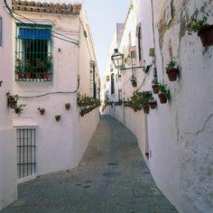 Este verano he vuelto a ellos y son tan bonitos ,que me parece importante el que los conozcais. A Medina-Sidonia se llega desde Chiclan...