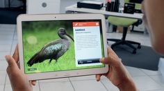 A tablet application, in both English and Sesotho, was created for the Johannesburg Zoo. The application is made up of four sections designed to educate and engage users on various aspects of the wetland region.