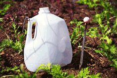 35+ Uses for Plastic Milk Jugs  You'll love these clever ideas for plastic containers