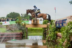 Photo by Shannon Brinkman Boyd Martin and Otis Barbotiere | The Chronicle of the Horse