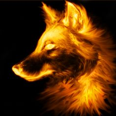 Fire Wolf | fire wolf photo wolf_by_cycyuts.png