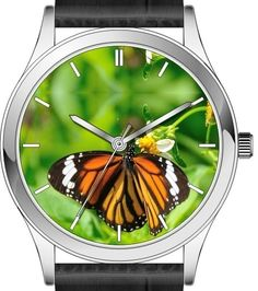 Butterfly watch wrist series - Common tiger butterfly