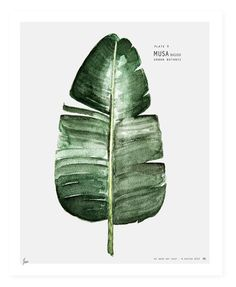 dirtbin designs: Maaike Koster's prints & art work
