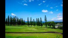 Maui Real Estate Videos
