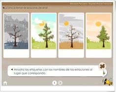 """""""Las estaciones del año"""" (Educarchile.cl)"""