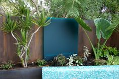 Tiny Perth Courtyard - contemporary - landscape - perth - Cultivart Landscape Design