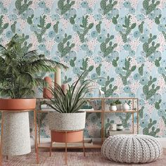 Pastel Cactus Removable Wallpaper, Desert Wall Mural, Boho Living Room Decor, Bright Botanical Peel and Stick, Pretty Nature Wall Cling, - Canvas Wall Decal / 1 roll: 24W x 120H